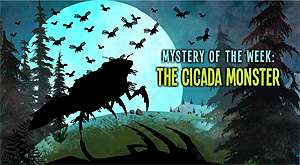Crystal Cove Online: The Cicada Monster